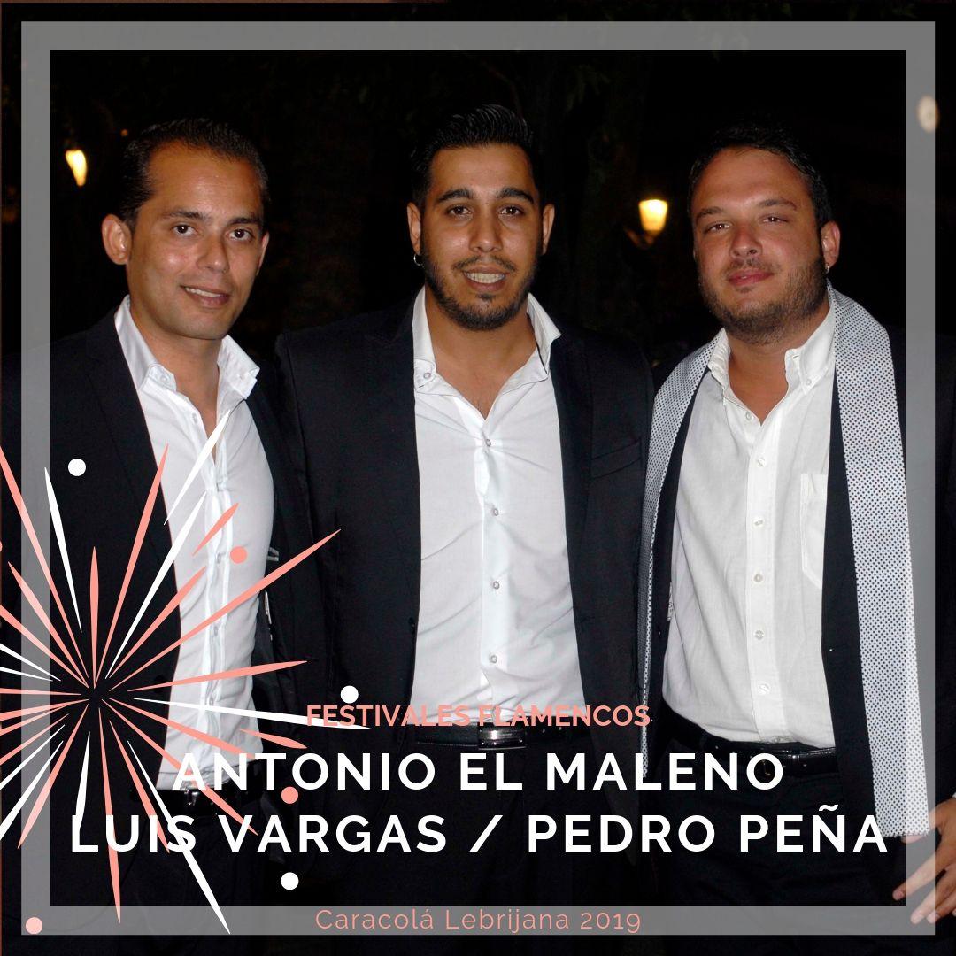 Artistas flamencos 54 Caracolá Lebrijana 2019_Tres Dinastías