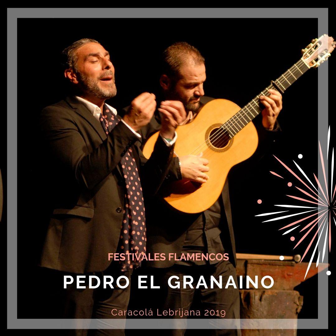 Artistas flamencos 54 Caracolá Lebrijana 2019_Pedro El Granaíno