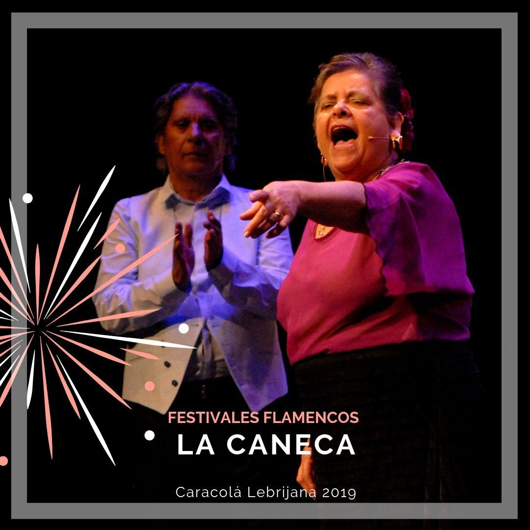 Artistas flamencos 54 Caracolá Lebrijana 2019_La Caneca
